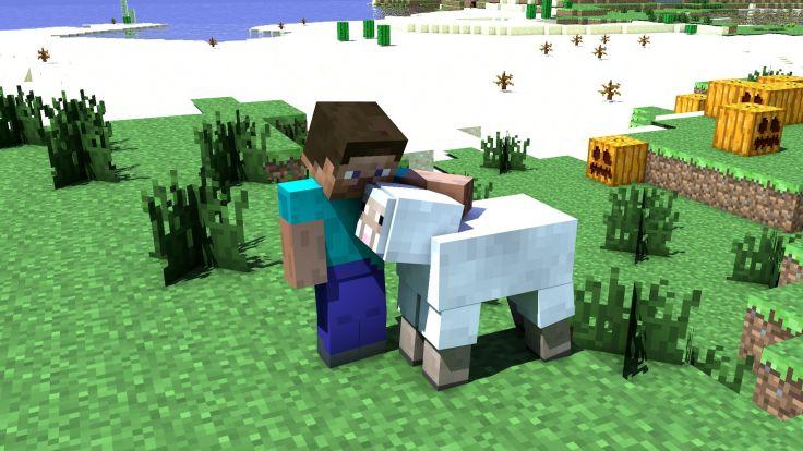 Овечка и Стив