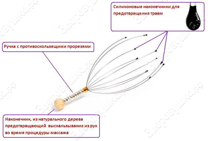 murashka-zdorovushka.JPG