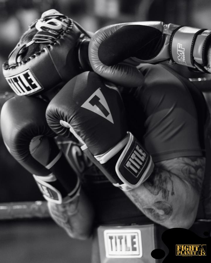Боксерские перчатки для тренировок и спаррингов