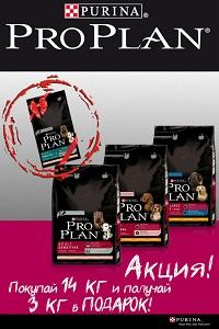 purina_proplan_akciya.jpg