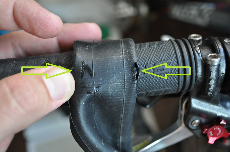 Змеиный укус на камере