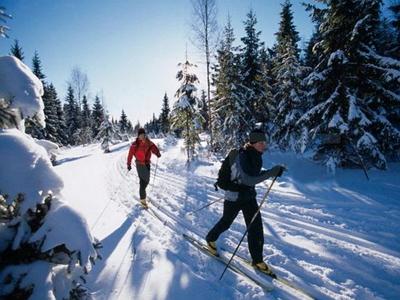 Катание на лыжном прогулочном комплекте