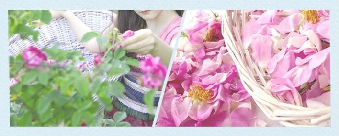 moist_floral_wax_light__3_.jpg