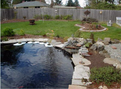 Вода в ландшафтном дизайне, пруды