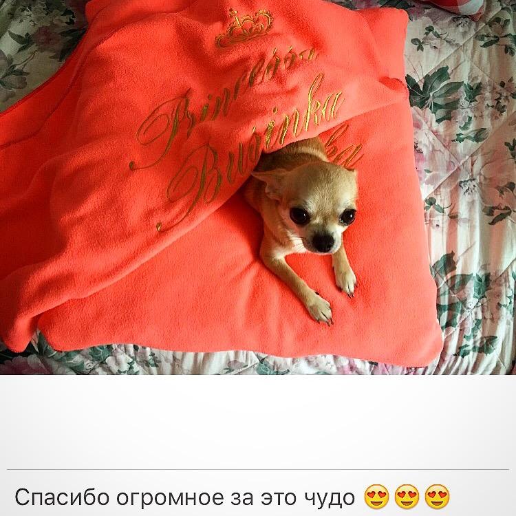 Копия_IMG_1487.jpg
