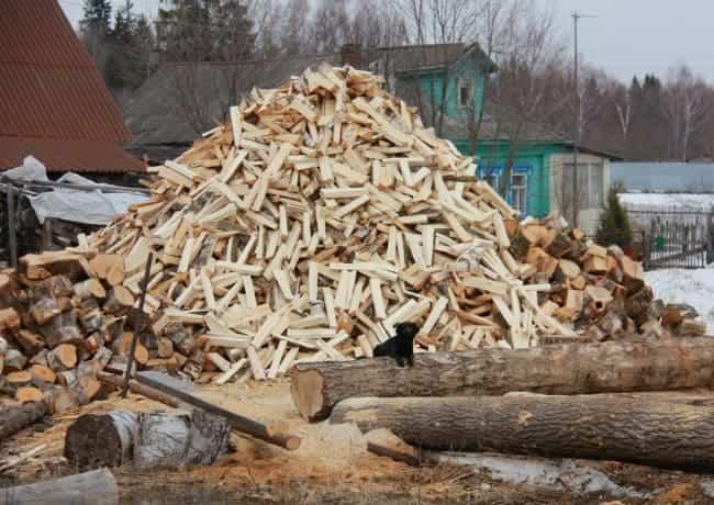 Заготовка дров дровоколом