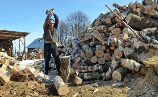 заготовка рубка леса