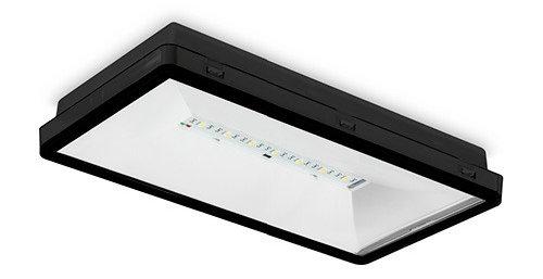 ONTEC S светильники эвакуационного освещения – цвет корпуса по заказу
