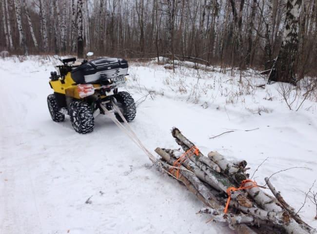 заготовка леса в лесу