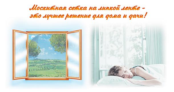 1-moskit1.jpg