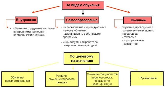 Классификация видов обучения
