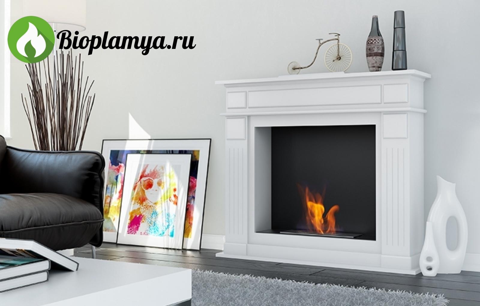 напольный-биокамин-в-портале-МАРГАРИТА-bioplamya-Firebird-в-интерьере-2.jpg