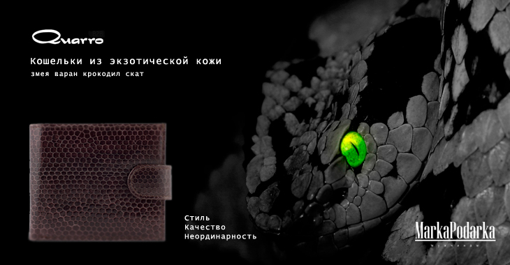 Кошельки_змея.jpg