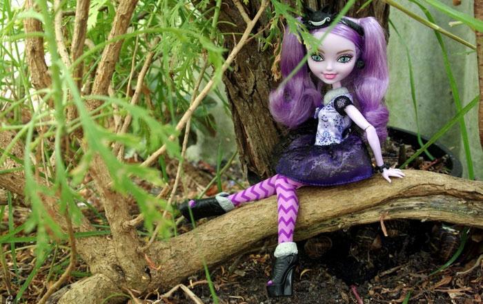 Kitty Cheshire