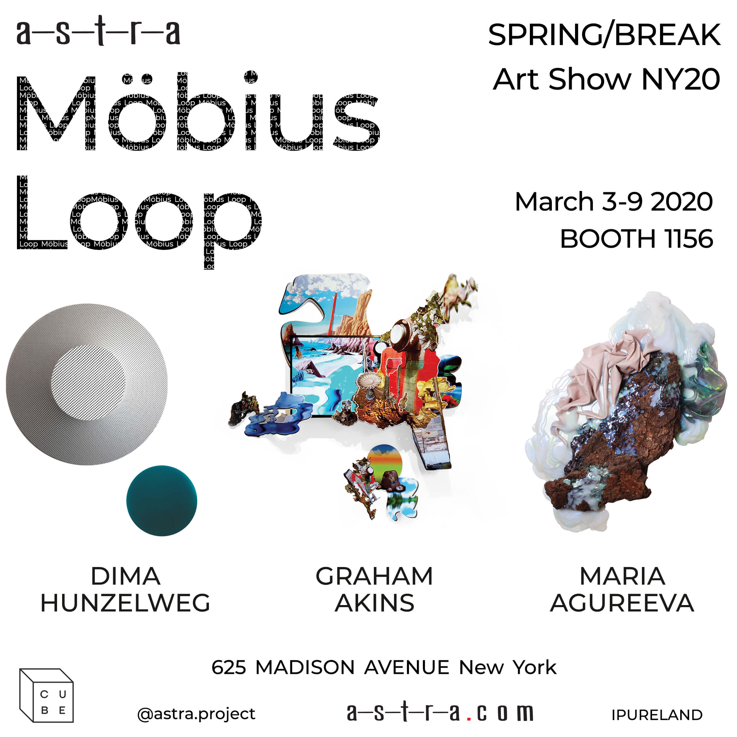 SPRING/BREAK Art Show NY20