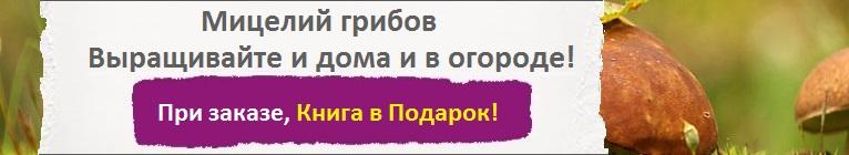 Купить Мицелий Грибов, цена низкая, доставка почтой наложенным платежом по России, курьером по Москве - интернет-магазин АгроБум