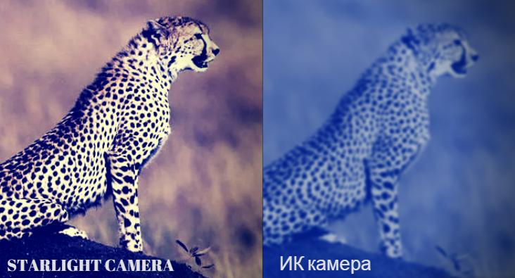 NEW технология цветного изображения в условиях сложной освещенности STARLIGHT камеры