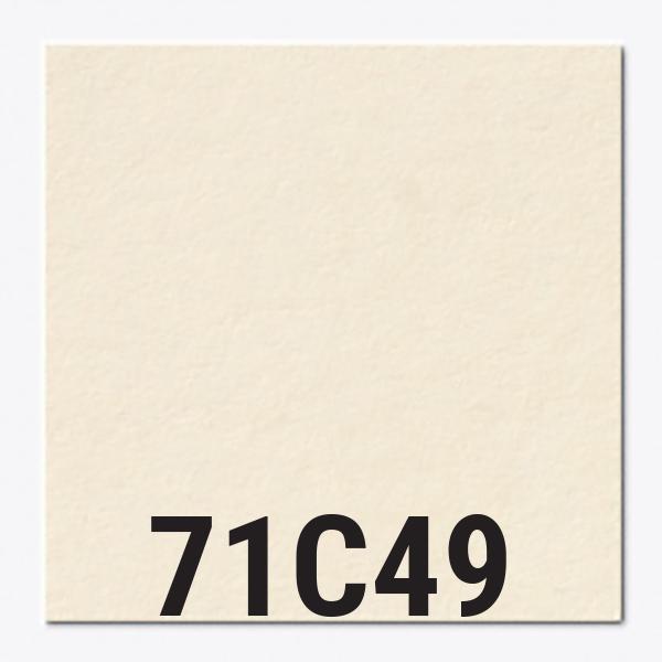71c49.jpg