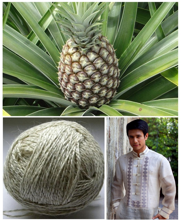 prazha-iz-ananasa.jpg