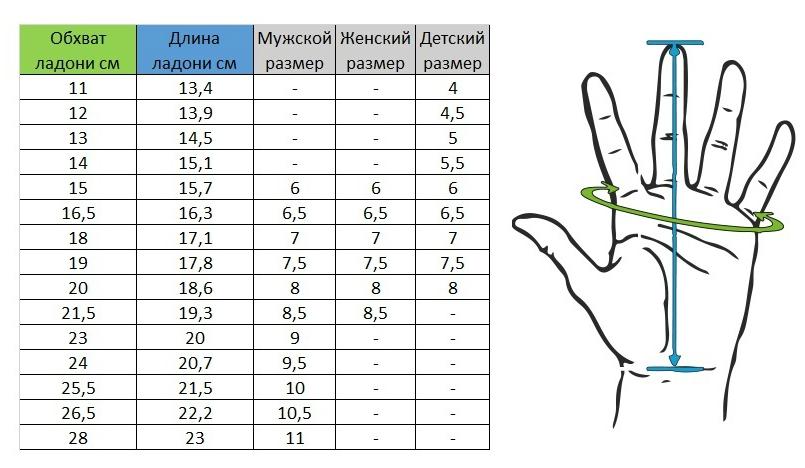 Размерная_сетка_перчатки.jpg