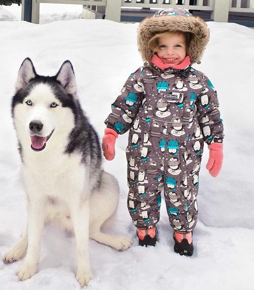 Зимний комбинезон Premont Зоопарк Калгари - новая коллекция Premont Зима 2018-2019!