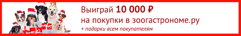 banner_1000x150_roz2019.jpg