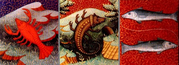 стихия воды - рак, скорпион, рыбы