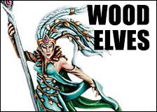 Wood_Elves.jpg