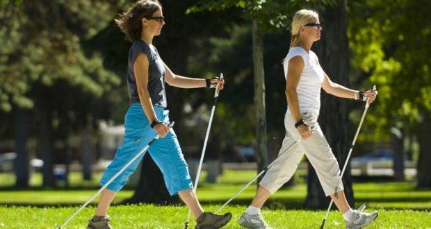 модели кроссовок для скандинавской ходьбы