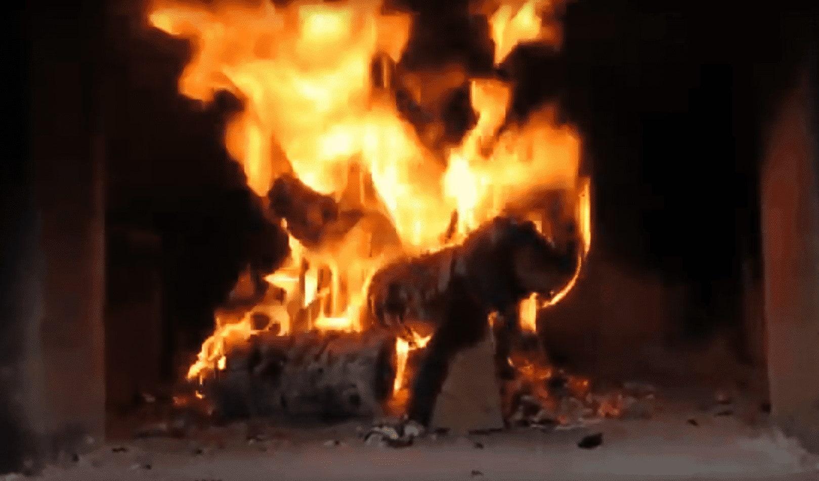 горение дров