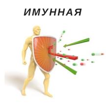 имунитет.jpg