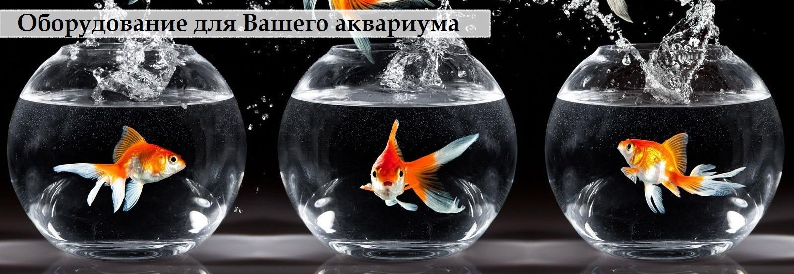 Оборудование для Вашего аквариума