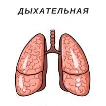 дыхательная4.jpg