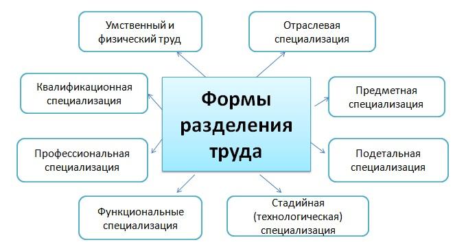 Основные формы разделения труда