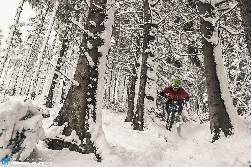 Тренировка зимой