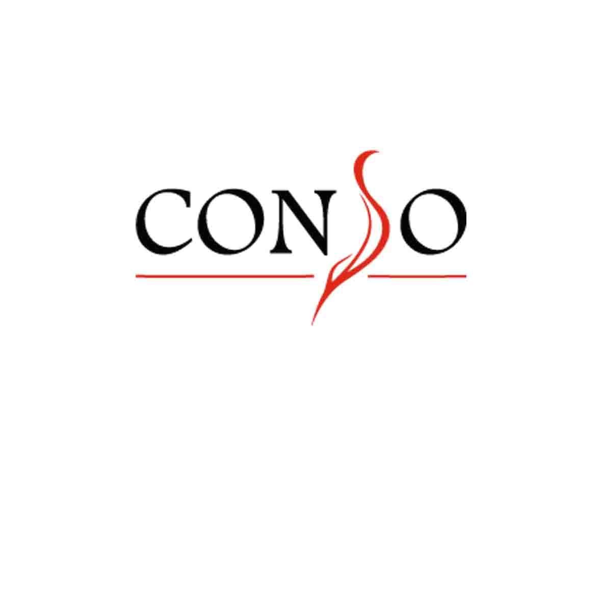 Женский пуховик Conso