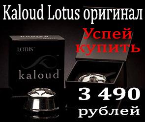 Купить Kaloud Lotus оригинал с доставкой по Москве и всей России
