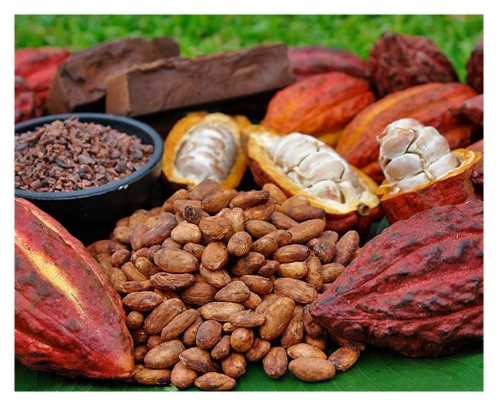 Какао бобы