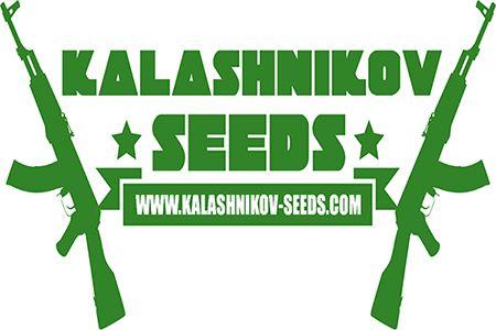 Купить семена конопли в Украине от компании Kalashnikov Seeds