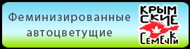 Купить в Украине феминизированные автоцветущие семена конопли Крымские Семечки
