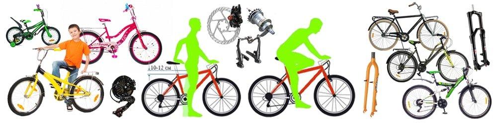 Сводная таблица с разбивкой велосипедов по росту и характеристикам