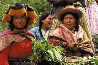 Primavera Перу