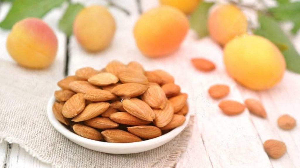 чем полезны ядра абрикоса