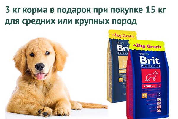 brit_3kg.jpg