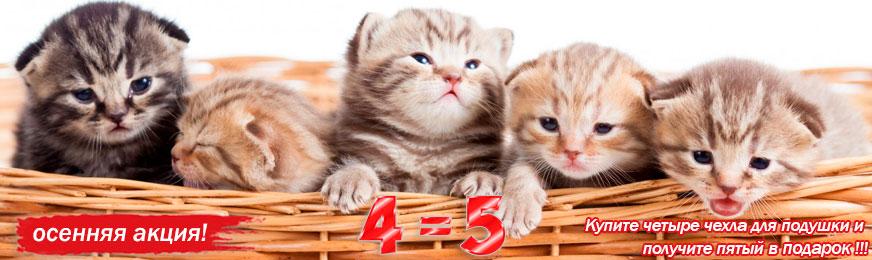 Акция-подушки-коты.jpg