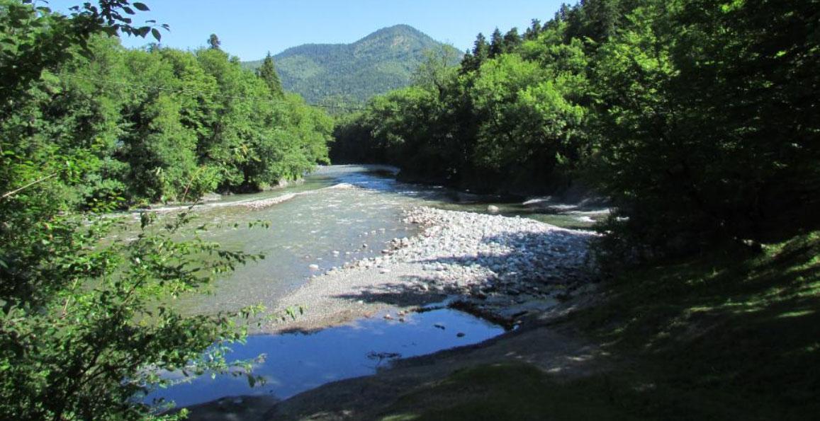 Окрестности нашего экочистого района
