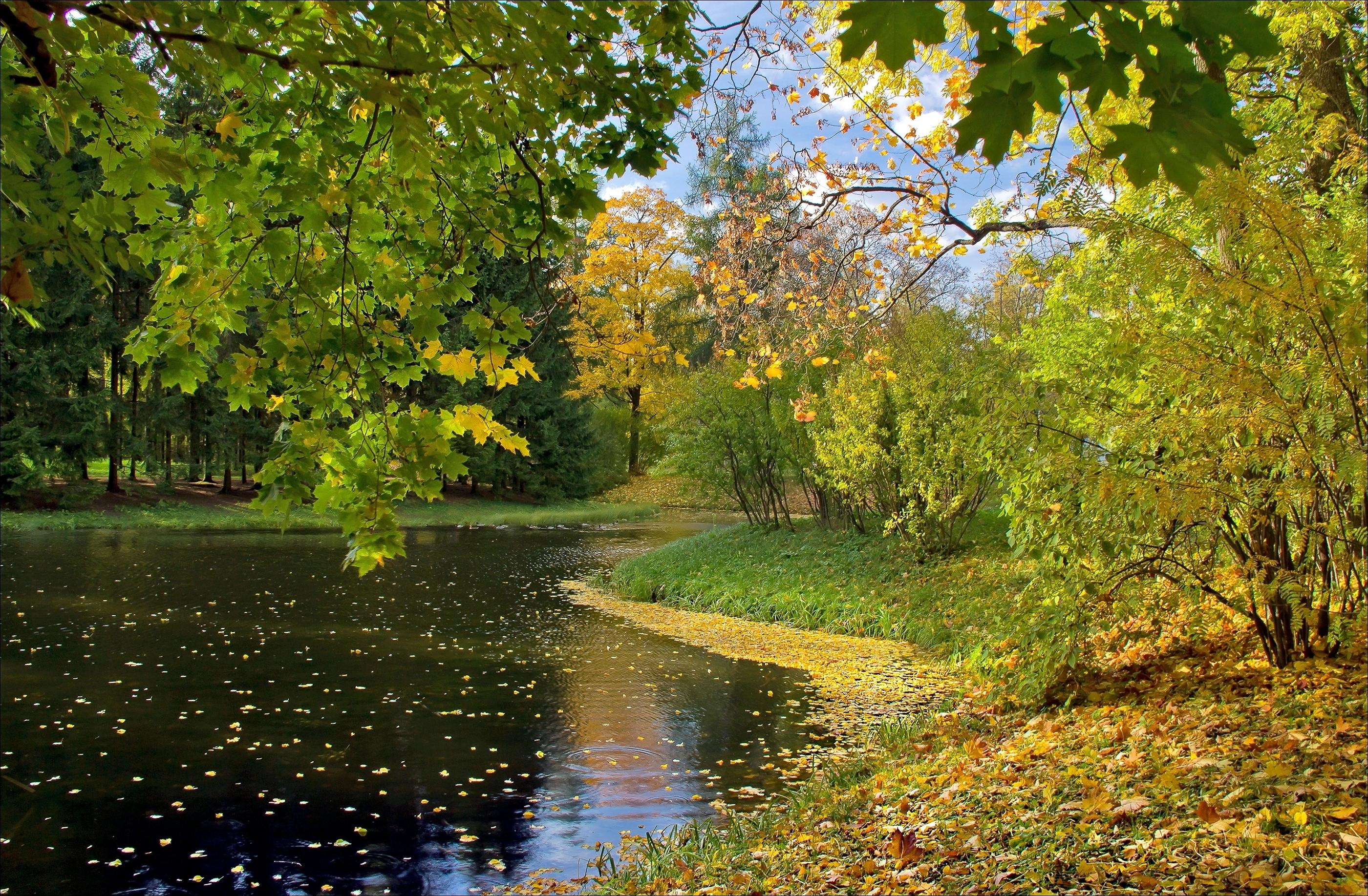lake-autumn-leaves.jpg