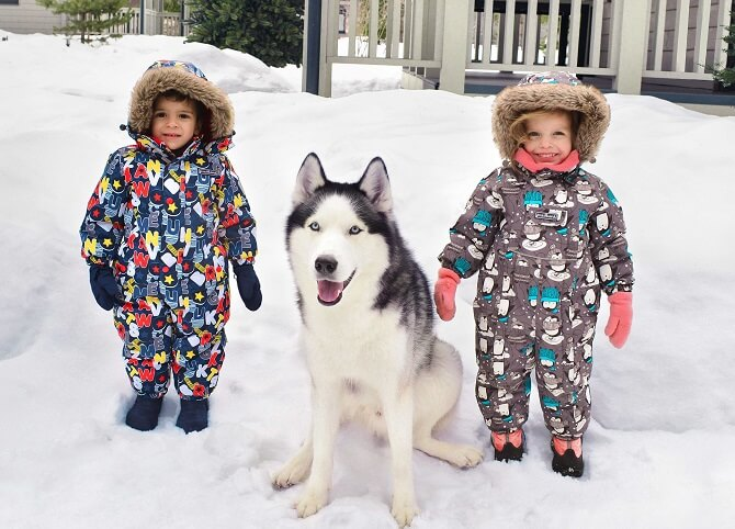 Комбинезон Premont купить Зоопарк Калгари WP83003 Grey в интернет-магазине Premont-shop!