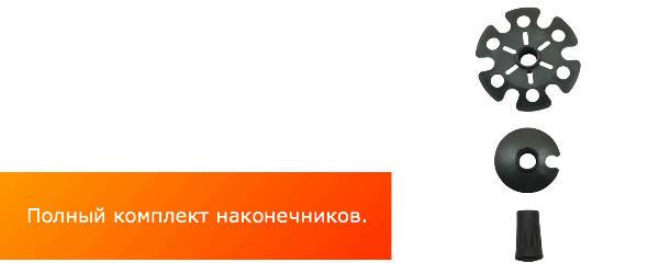 komplekt_nakonechnikov_dlya_trekkingovykh_palok_Btrace_700x700.jpg