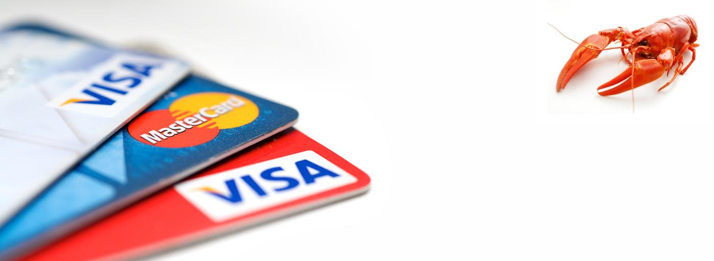 Вы можете оплатить ваш заказ банковской картой!